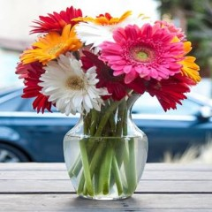 Flower Arrangement in a Vase Made Easy!